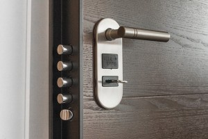 professional emergency locksmith services